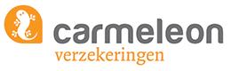 Carmeleon Prezi bedrijfspresentatie ShareAll